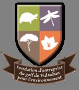 logo-FEGVE